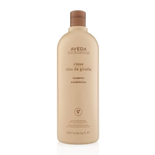 Aveda Colour Enhance Clove Shampoo